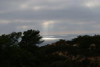 Torrey Pines Beach - San Diego